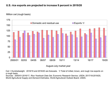 U.S. rice exports are projected to increase almost 9 percent in 2019/20