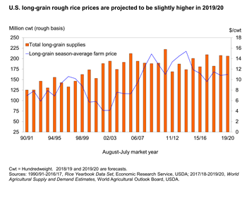 U.S. long-grain rough rice prices are projected to be slightly higher in 2019/20