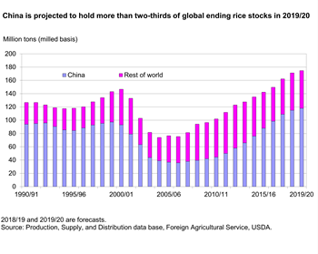 China is projected to hold more than two-thirds of global ending rice stocks in 2019/20