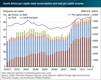 As incomes grow, poultry consumption in South Africa rises