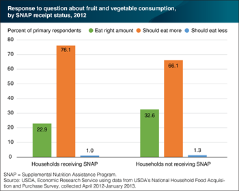 SNAP households are less likely to think they eat the right amount of fruits and vegetables