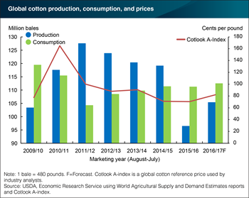 Consumption exceeding production in the global cotton industry for second consecutive year