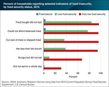 "What is ""very low food security""?"