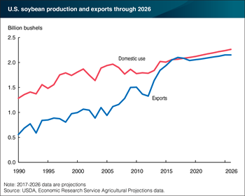 U.S. soybean domestic use and exports projected to increase through 2026