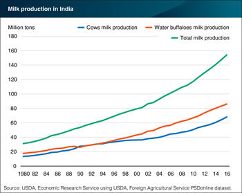 India remains the world's largest dairy producer