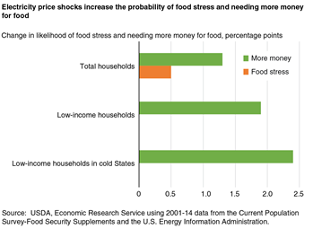 Electricity price shocks increase the probability of food stress and needing more money for food
