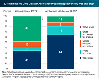 Grass and forage crops lead applications for the Noninsured Crop Disaster Program, but vegetable crops lead for buy-up option