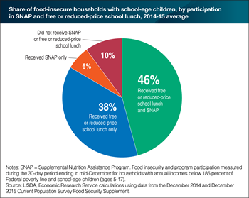 Over 80 percent of food-insecure households with school-age children receive free or reduced-price school lunches