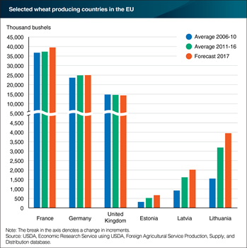 France, Germany, and the United Kingdom lead the EU in wheat production, but new member states are leading in growth