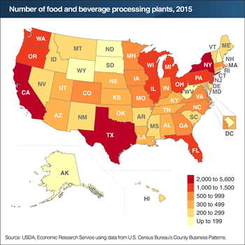 California, New York, and Texas lead in number of food and beverage processing plants