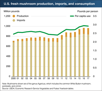 Americans consume nearly 3 pounds of fresh mushrooms per year