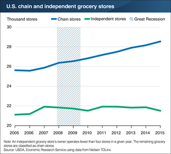 Number of chain grocery stores increased from 2005 to 2015, while number of independent grocery stores showed little growth