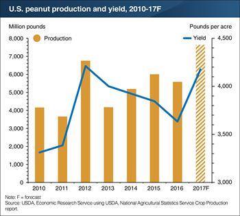 Record acreage and high yields raise U.S. peanut harvest to an all-time high