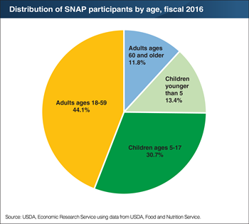 Working-age adults comprise 44 percent of SNAP participants