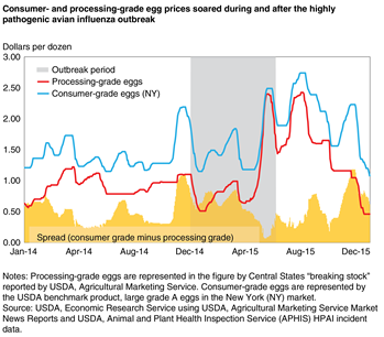 Consumer- and processing-grade egg prices soared during and after the highly pathogenic avian influenza outbreak