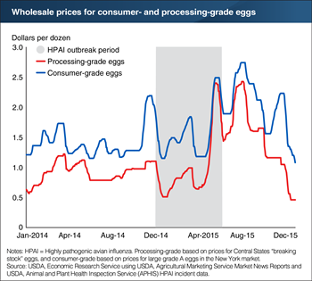 Egg prices rose and remained high during and after the 2014-15 U.S. highly pathogenic avian influenza outbreak