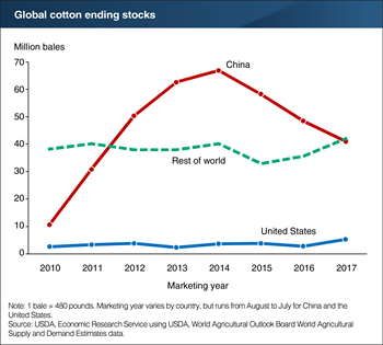 World cotton stocks are projected to rise slightly in 2017/18