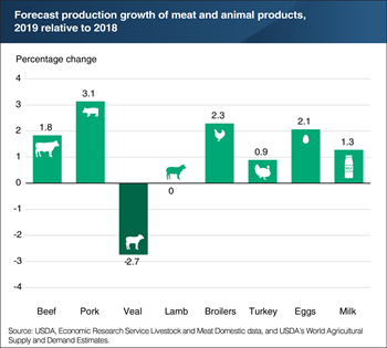 U.S. production of most major meat and animal products is expected to increase in 2019