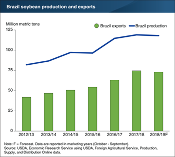 Brazil's rising soybean exports drive production growth