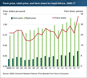 Farm share of retail price of head lettuce rose in 2017