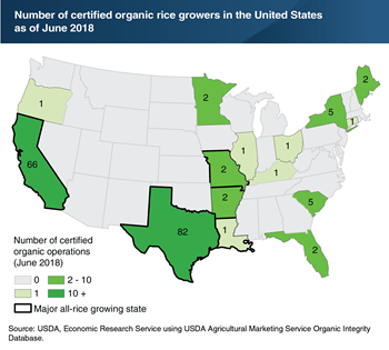 California and Texas are home to 86 percent of all USDA-certified organic rice growers in the United States
