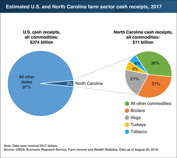 North Carolina, recently affected by Hurricane Florence, accounted for an estimated 3 percent ($11 billion) of U.S. farm sector cash receipts in 2017