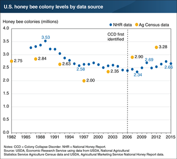 Honey bee colony levels have remained stable despite elevated loss rates