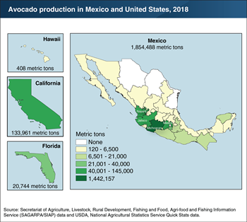 U.S. and Mexican avocado production is concentrated in a small number of States