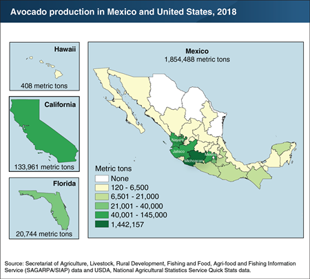 This chart shows avocado production in Mexico and United States. 2018