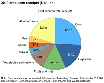 Corn, soybeans accounted for over 40 percent of all 2019 U.S. crop cash receipts