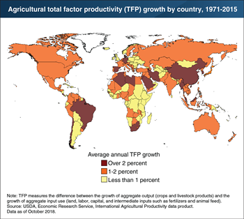 Developing countries, such as China and Brazil, lead global productivity growth