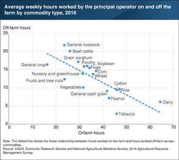 More time spent working on the farm leads to less off-farm labor across different commodities
