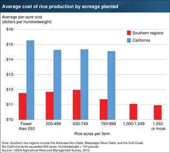 Economies of size possible for rice farms in the Southern United States