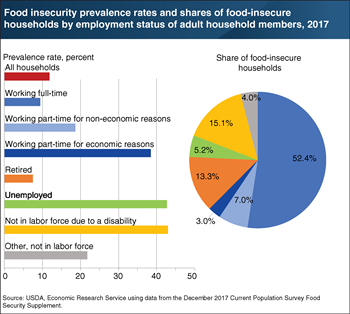 Food insecurity varies by adult employment status