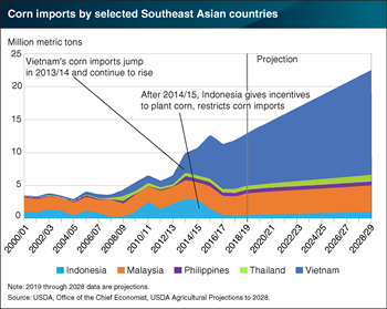 Vietnam and Malaysia drive significant growth in Southeast Asia corn imports