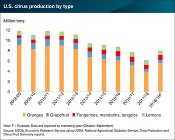 U.S. citrus production set to rebound in 2018/19
