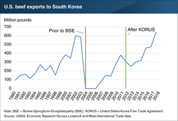 U.S. beef exports to South Korea reached record high in 2018