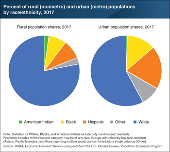 Racial and ethnic minorities made up 22 percent of the rural population in 2017 compared to 42 percent in urban areas
