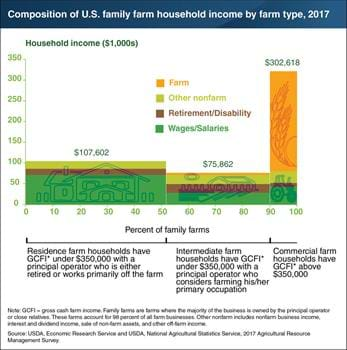 Family farm households rely on various sources of income