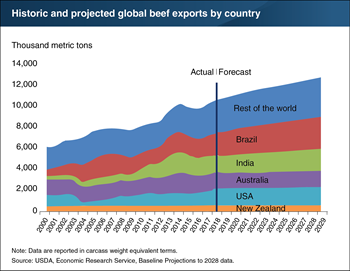 Brazil projected to outpace other top beef-exporting countries over the next decade