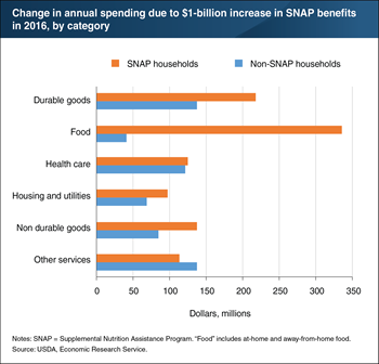 Higher SNAP benefits expand spending on other goods as well as food
