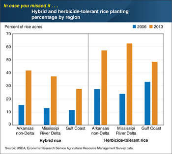 ICYMI... Rice producers in the southern United States increased adoption of hybrid and herbicide-tolerant seed varieties between 2006 and 2013