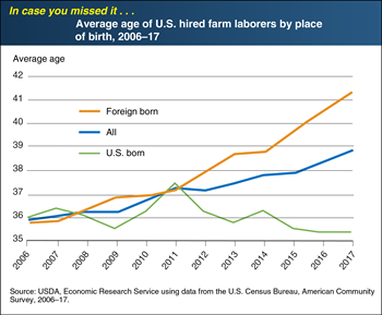 ICYMI... Average age of all hired farm laborers is rising, driven by the aging of foreign-born farm laborers