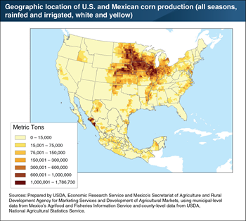 Most corn production in U.S. and Mexico is geographically concentrated