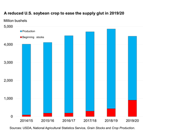 A reduced U.S. soybean crop to ease the supply glut in 2019/20