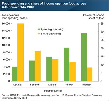 As income increases, the share of income spent on food falls
