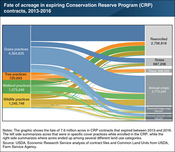 The fate of expiring Conservation Reserve Program acreage varied with its conservation practice