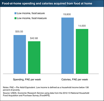 Food-insecure households spend less on food and acquire fewer calories than food-secure households