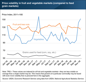 Volatility in market prices for fruit and vegetables helps drive food loss during production and distribution