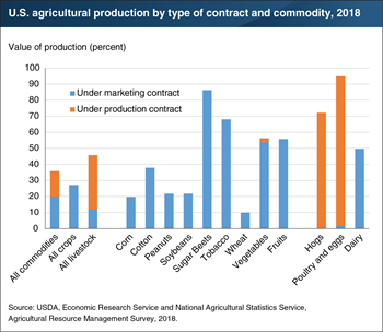 Production contracts dominate hog and poultry production, while marketing contracts are more widely used in crops and dairy